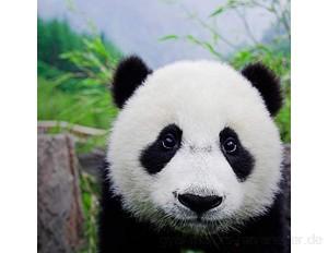 Kaper Go Puzzle for Erwachsene 1000 Stück Niedlichen Panda Tiere DIY Holzpuzzle Kits Geschenk for Kinder 75x50cm Educational Games Spielzeug