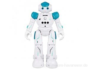 DZC Roboter Spielzeug für Kinder programmierbare intelligente Geste Sensing Roboter Interactive Gesprächsgure Sensing Fernbedienung Kinder